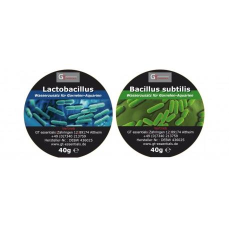 GT essentials - Lactobacillus - bakterie 40g